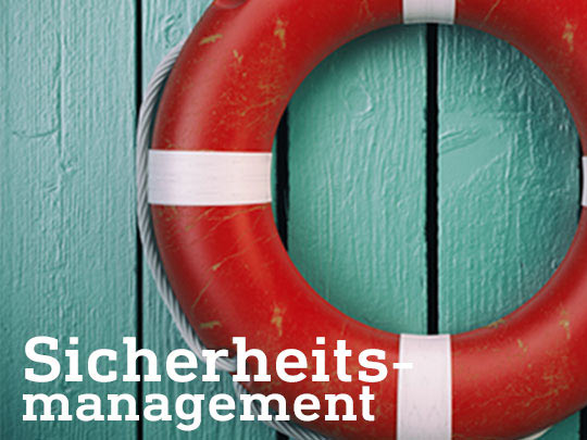 Sicherheitsmanagement Security Management Infraprotect